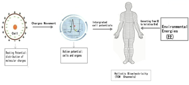 Bioelectricity Medicine