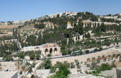 mt-olives from Temple Mount