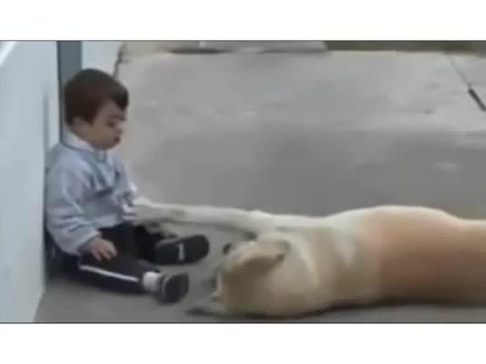 Dog & Boy 1