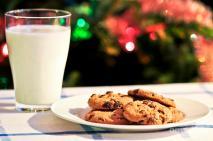milk-and-cookies-for-santa-elena-elisseeva